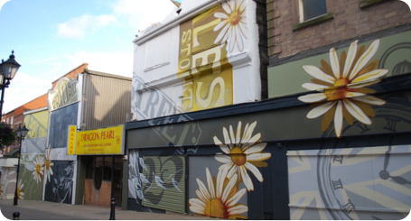 High Street Rotherham Graffiti Mural Daisies by Urban Canvas